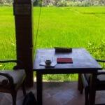 Einen Tag und eine Nacht in Ubud Bali